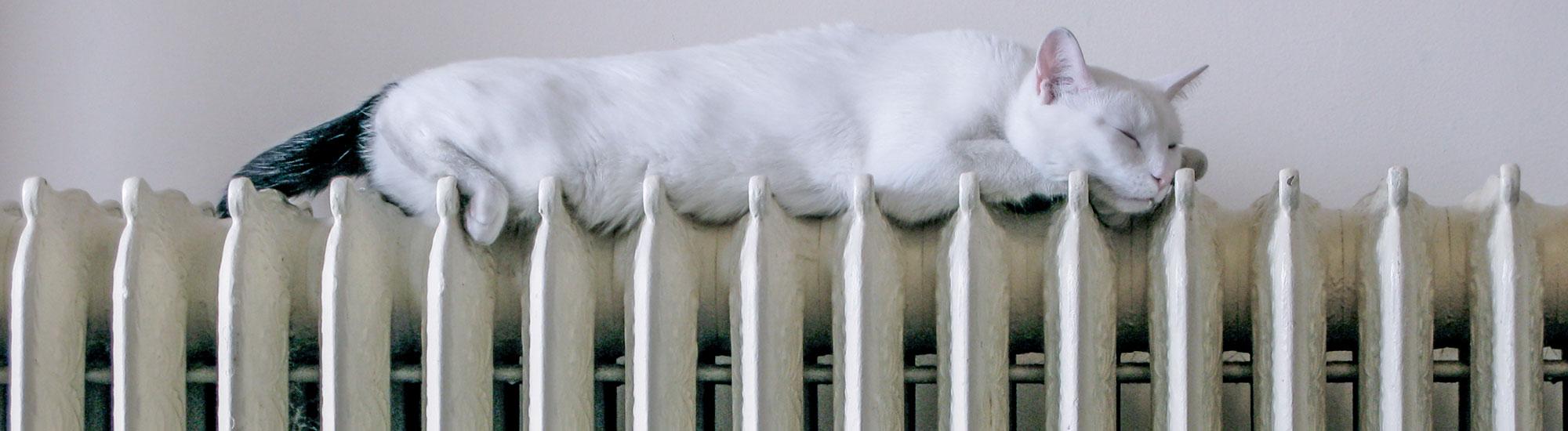 immagine impianto termoidraulico ristrutturazioni